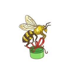 Bee carrying gift box drawing vector