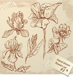 Set of Vintage Realistic graphic flowers vector image vector image