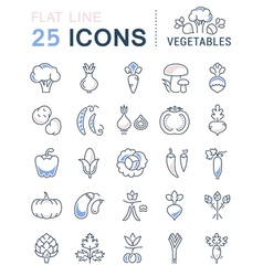 Vegetables line icons 3 vector