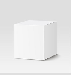 White square box Cardboard box container vector image