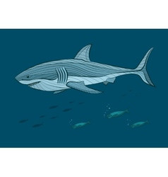 Decorative big white shark in the sea with fish vector image