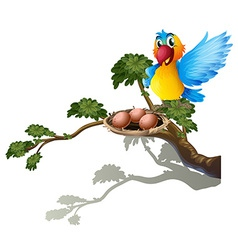 A bird watching the nest vector image