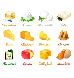 Cheese icons vector image vector image