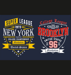 college new york city vector image