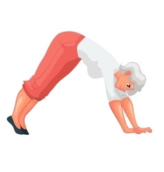 Beautiful senior woman in various poses of yoga vector
