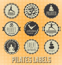 Pilates labels and icons vector