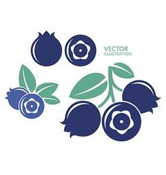 Blueberry icon set vector