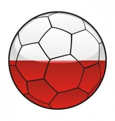 poland flag on soccer ball vector image