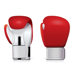 boxing gloves vector image vector image