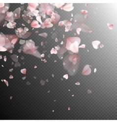 Pink petals background EPS 10 vector image vector image