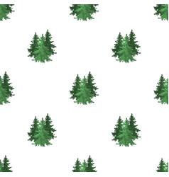 Canadian spruce canada single icon in cartoon vector