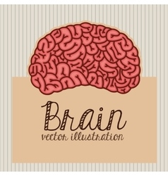 Human brain design vector