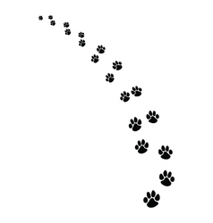 footprints of dogs vector image vector image