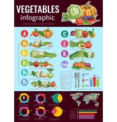 Vegetables infographic design sketch style vector image