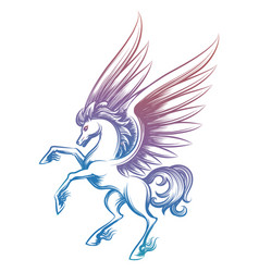Colorful sketched pegasus isolated on white vector