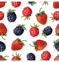 berry pattern vector image