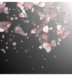 Pink sakura petals background eps 10 vector