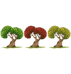 Trees in three different color leaves vector image vector image