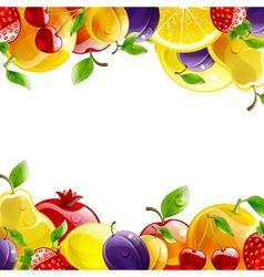 banner of fresh fruit vector image vector image