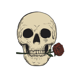 skull and rose tattoo vector image