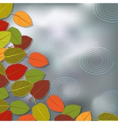 Autumn foliage rain background vector