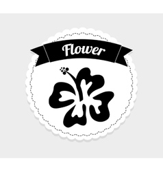hawaii flower vector image