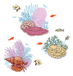 corals and swimming fishes vector image