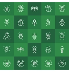 Insects line icons vector