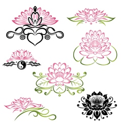 Lotus flowers set vector