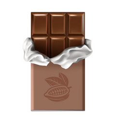 chocolate bar vector image vector image