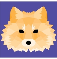 Orange low poly fox vector