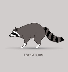 Raccoon side view graphic vector
