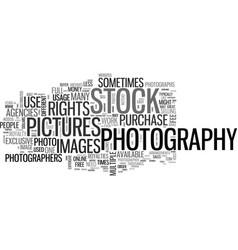 whatdoyouknowaboutstockphotography text word vector image vector image