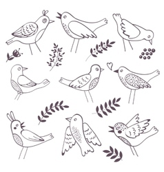 Cute handdrawn birds vector