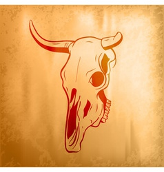 Bull skull on the background vector