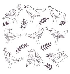 Cute handdrawn birds vector image vector image