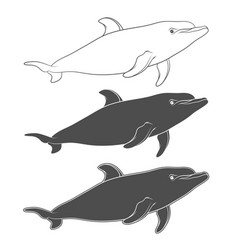set of with a dolphin vector image