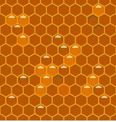 bee hiveth vector image