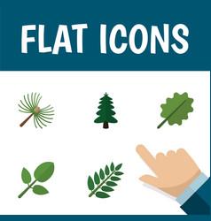 Flat icon natural set of park rosemary acacia vector