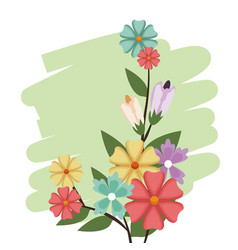Flowers bunch nature spring petal design vector
