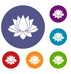 Lotus icons set vector