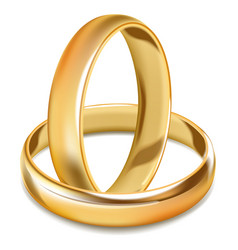 plain smooth gold shiny wedding rings isolated vector image vector image