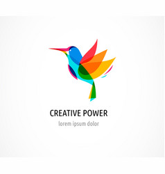 hummingbird colorful icon and logo vector image