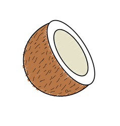 Delicious slice coconut to eat the fruit vector