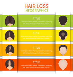 Hair loss infographic template vector