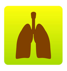 Human organs lungs sign brown icon at vector