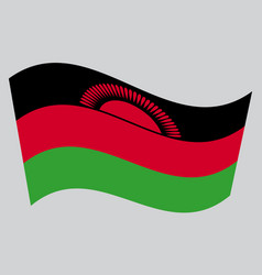 Flag of malawi waving on gray background vector