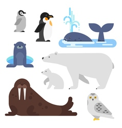 flat style set of arctic animal vector image vector image