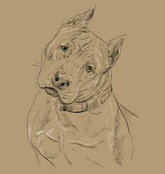 Monochrome american staffordshire terrier hand vector