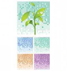 Seedlings vector